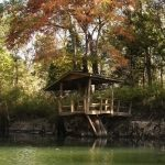 Chipola River Tree House