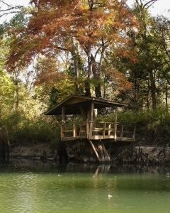 Chipola River Tree House