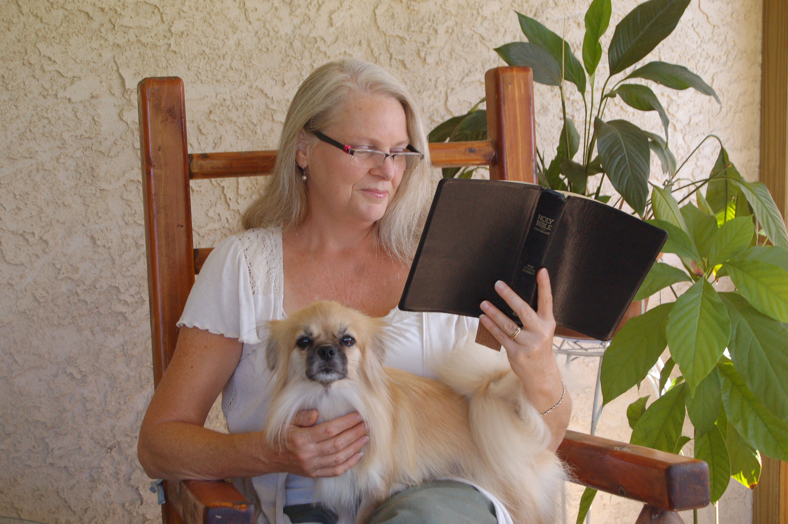 Christian Stock Photos by Linda Bateman - Woman Reading Bible while Sitting in Rocking Chair and Dog in Lap