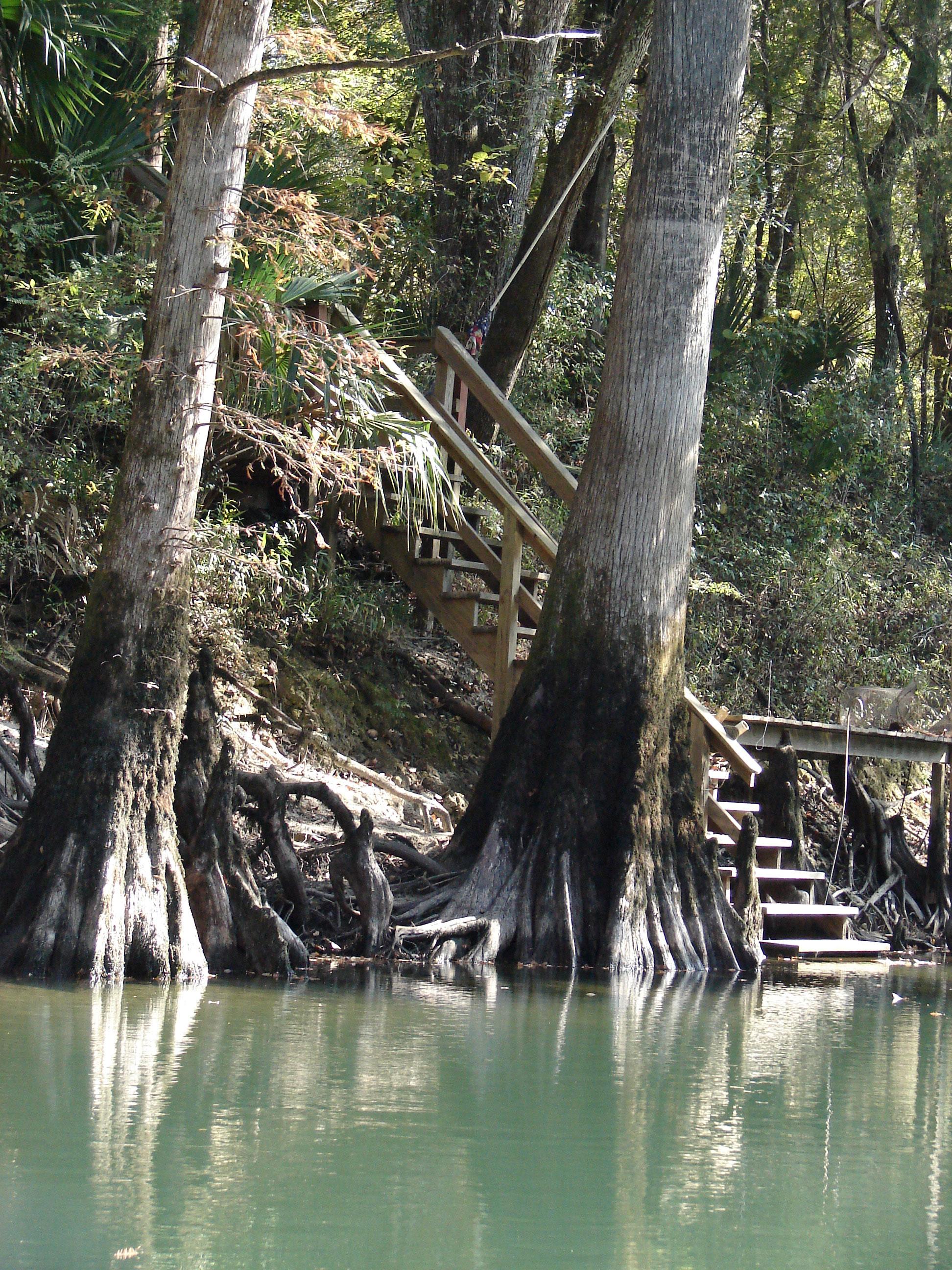 steps-stock-photos-florida-panhandle-chipola-river-linda-bateman