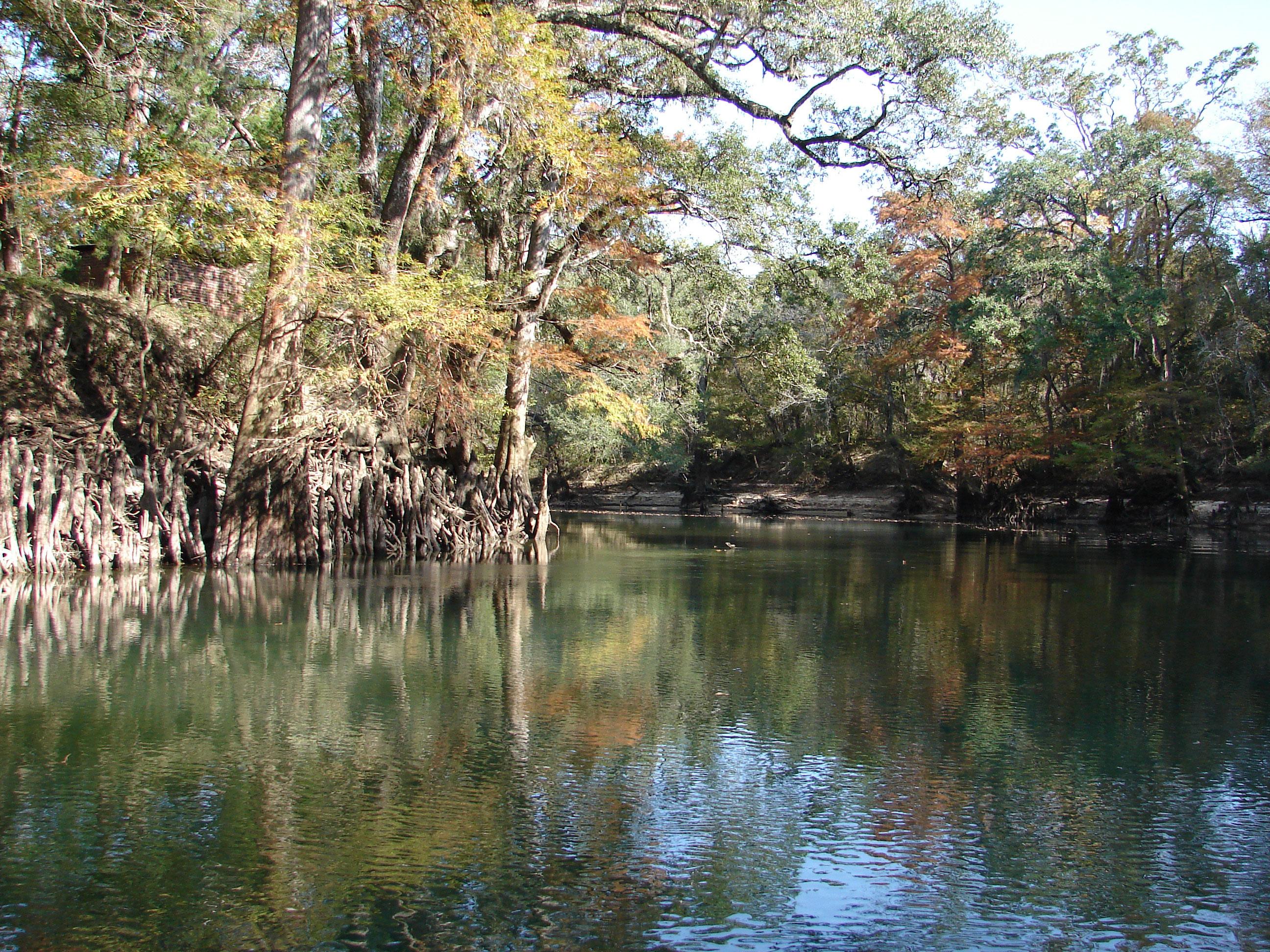 native-americans-lived-along-stock-photos-florida-panhandle-chipola-river-linda-bateman