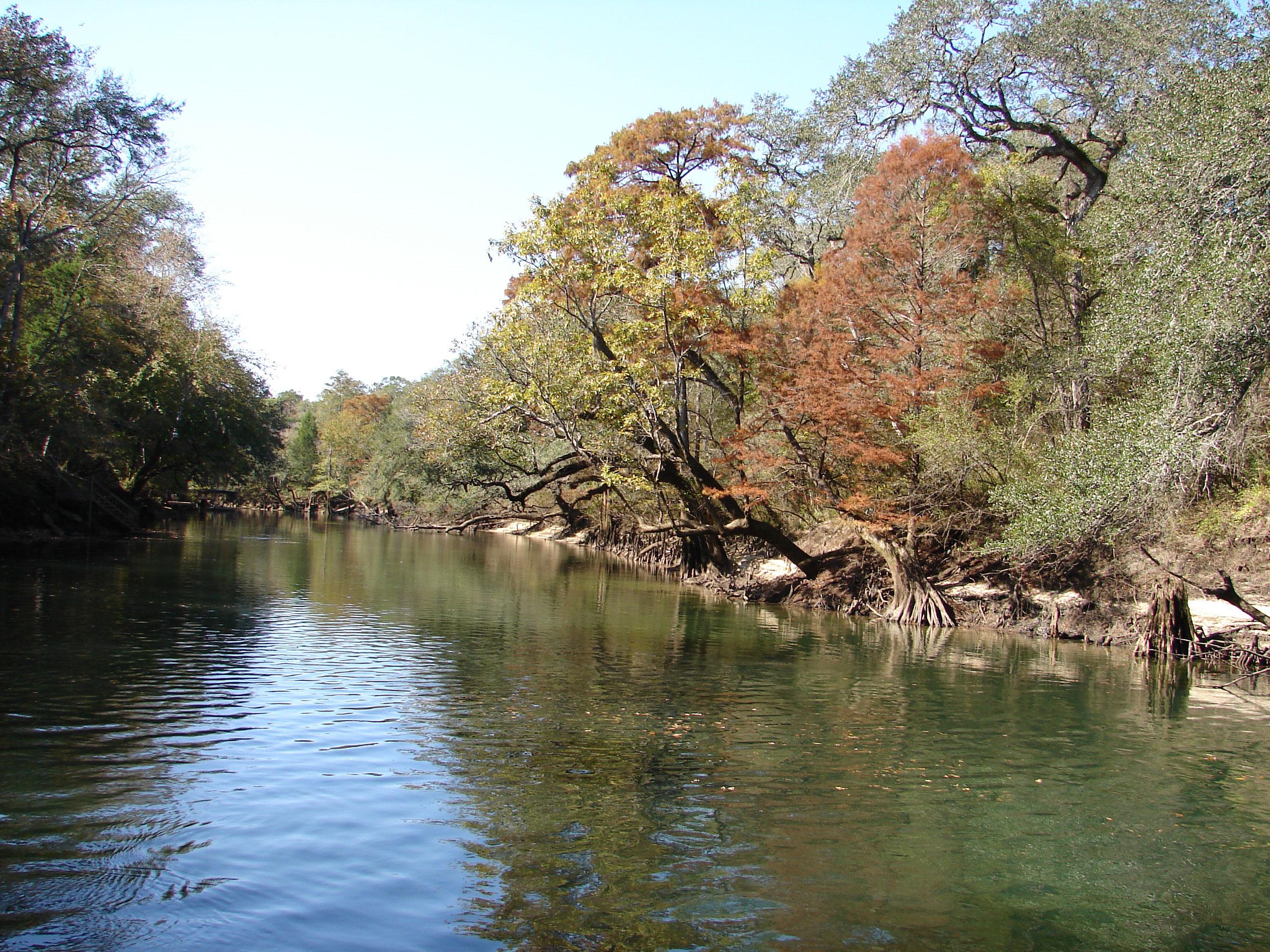 92-miles-long-stock-photos-florida-panhandle-chipola-river-linda-bateman