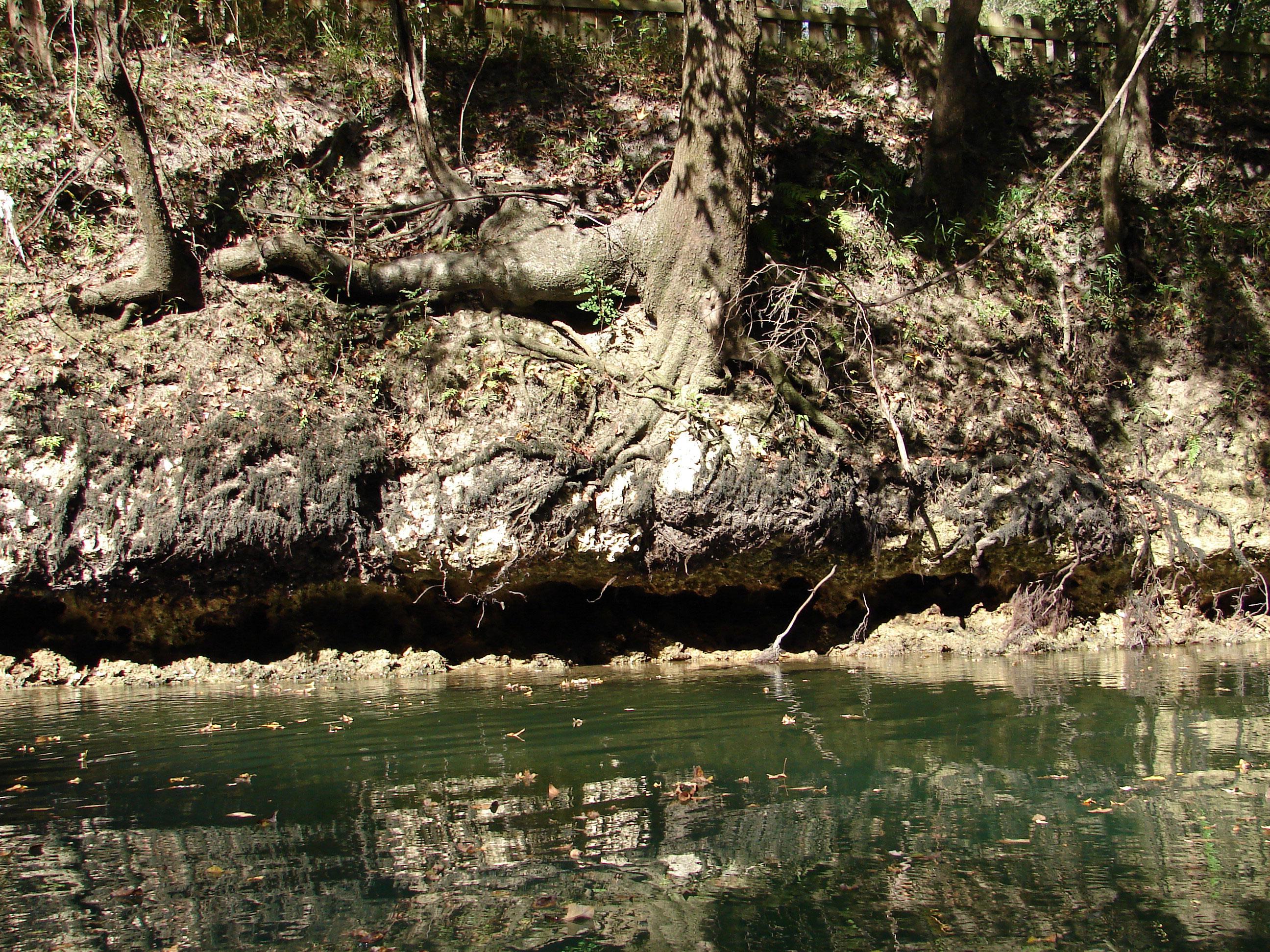 caves-stock-photos-florida-panhandle-chipola-river-linda-bateman