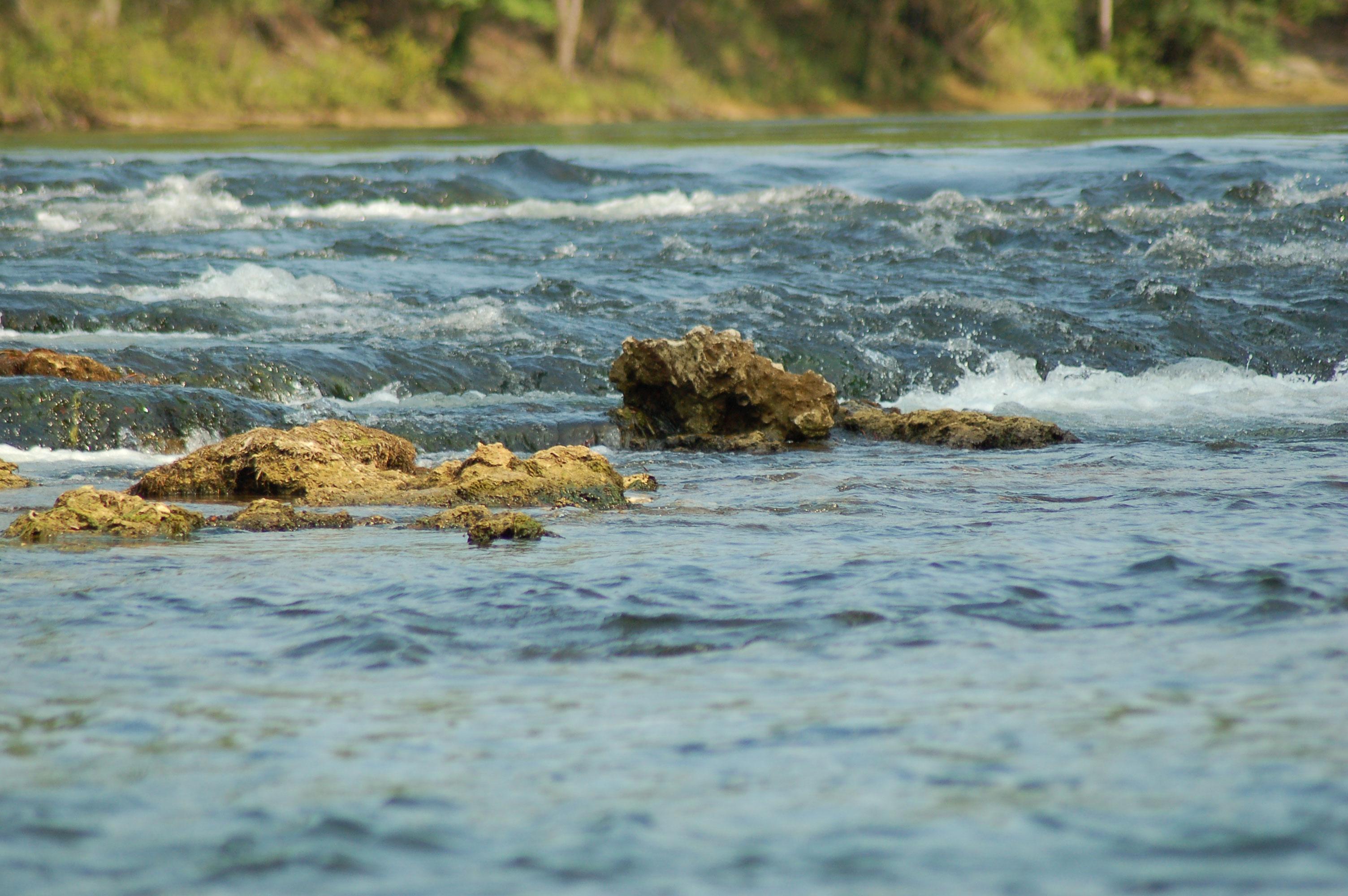 rapids-look-and-tremble-chipola-river-stock-photos-florida-panhandle-linda-bateman