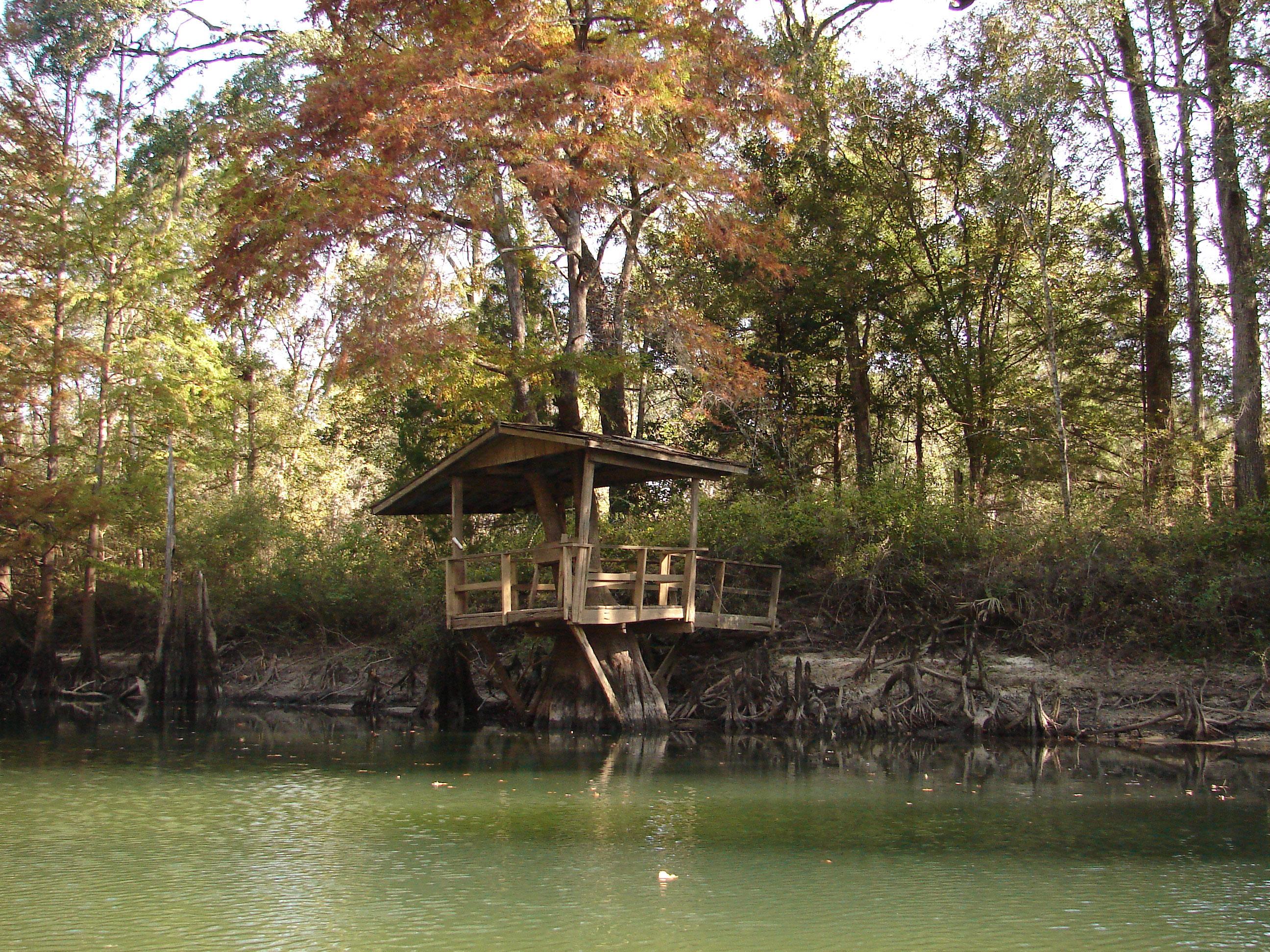 tree-house-fishing-fall-colors-stock-photos-florida-panhandle-chipola-river-linda-bateman