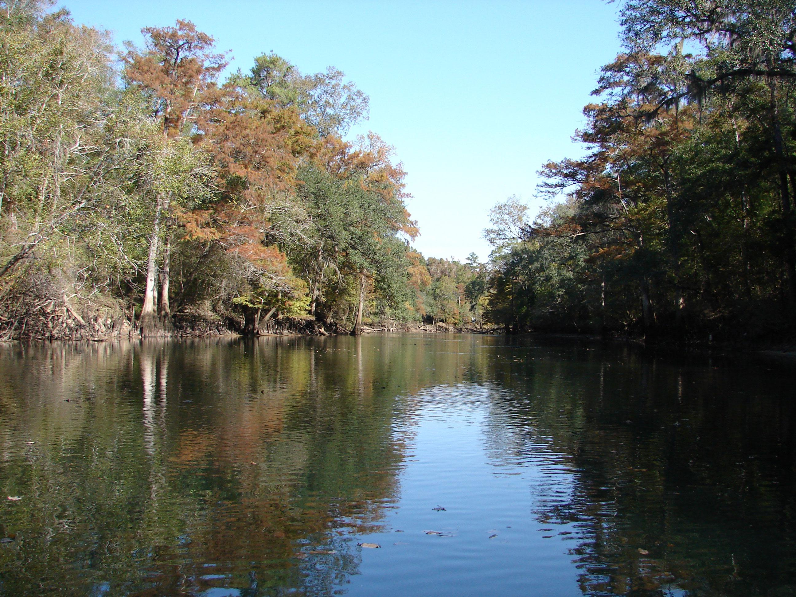 barges-pole-boats-once-traveled-stock-photos-florida-panhandle-chipola-river-linda-bateman
